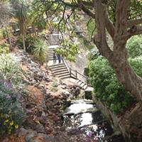 Cave Gardens, Mt Gambier