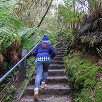 Erskine Falls Steps, Lorne