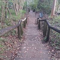 Nulty Way Steps, Arana Hills